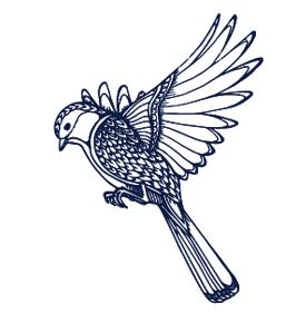 Blazing Daisy logo bird